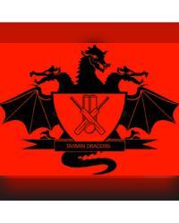 Taiwan Dragons