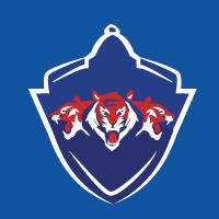 Delhi Capitals-logo