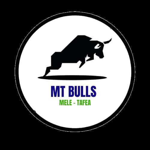 MT Bulls-logo